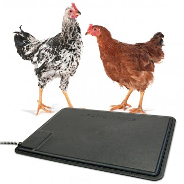 K&H Thermo-Chicken Heated Pad