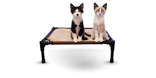 K&H New Cat Products