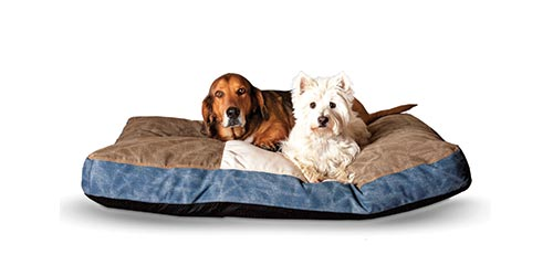 K&H New Dog Products